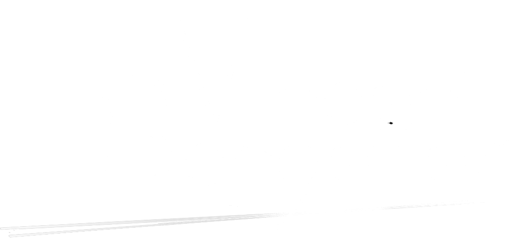 Vincent Schaeffer Arts